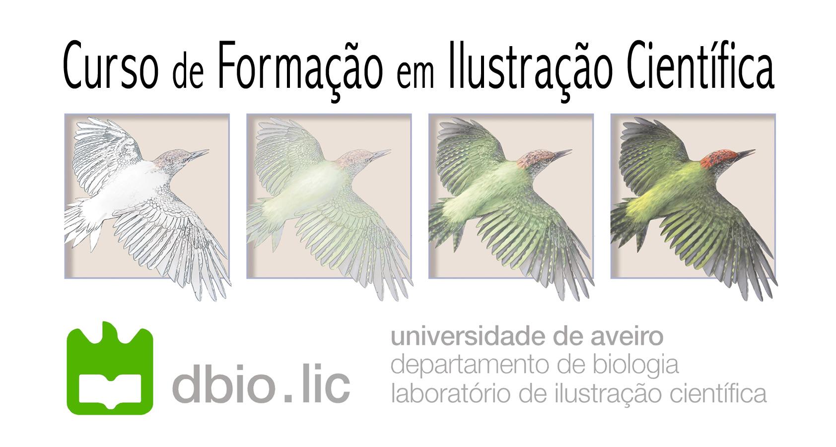 divulgac_a_o-cursoUA-cfic-3ed