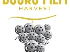 douro-film-harvest-2014-destaque