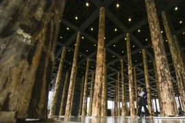 bosque_museu