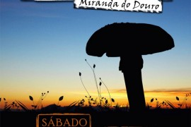 jornadas_micologicas