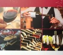 manual vinhos