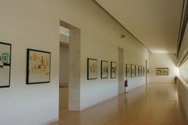 museu_macna