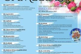 festa_camelias