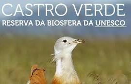castro_verde_reserva_uesco