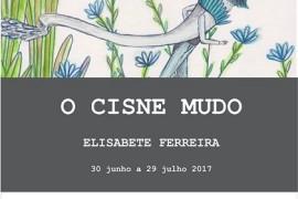 cisne_mudo_rosinhas