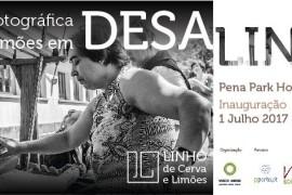 exposicao_desalinho