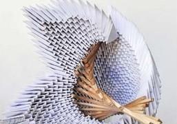 origami_exp
