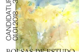 bolsas_julio_resende_pedrogao