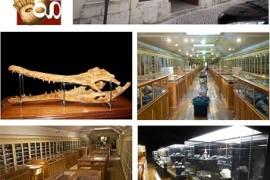 dim_museu_geologico_2018