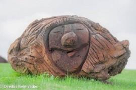 exp_sorrisos_pedra