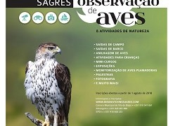 festival_observacao_aves_2018