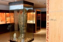 sarcofago_museu_farmacia