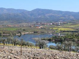 Vilarelhos, Alfândega da Fé