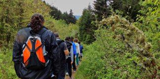 Caminhadas, Percursos Natureza