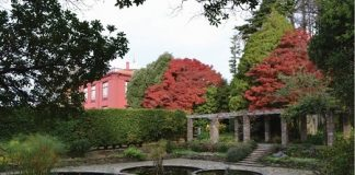 Jardim Botânico Porto