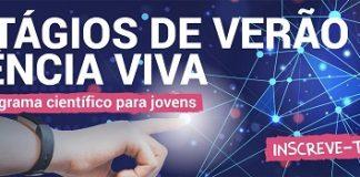 Estagios Verão Ciencia Viva2 2020