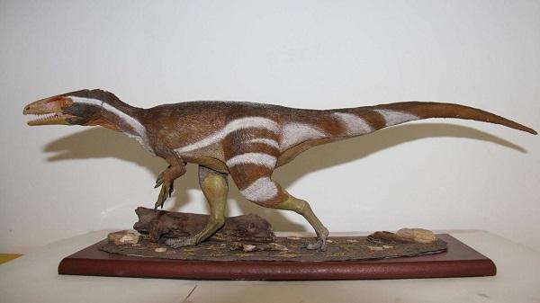 Fossil_Aratasaurus museunacionali