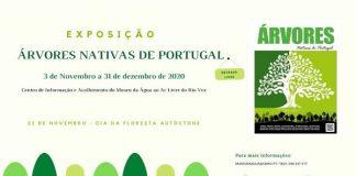 exp_arvores_nativas_portugal_arcos_valdevez