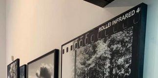 exp_foto_pitoes_junias_galeria_adorna