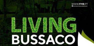 voluntariado_mata_bussaco