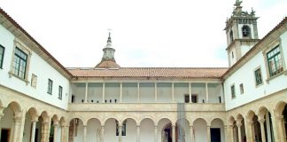 museu_amadeo